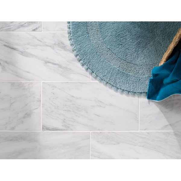 Arabescato Carrara 12'' x 24'' Marble Field Tile in White by MSI