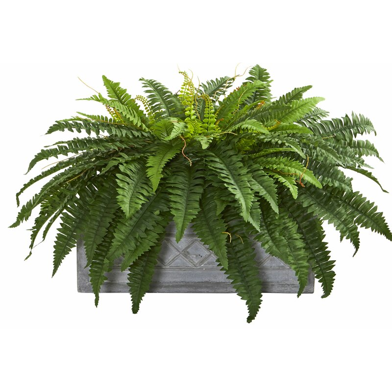 Charlton Home 23 Artificial Fern Plant In Planter Wayfair