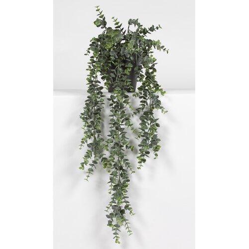 Hängende Kunstpflanze Sukkulente im Topf Die Saisontruhe | Dekoration > Dekopflanzen | Die Saisontruhe