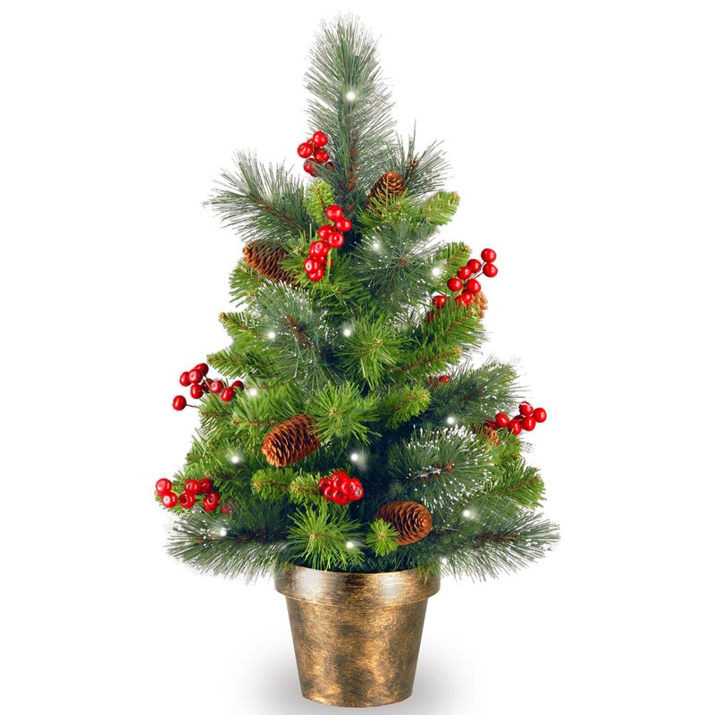 Spruce Small 2' Green Artificial Christmas Tree with 35 White Lights with  LED - Three Posts Spruce Small 2' Green Artificial Christmas Tree With 35