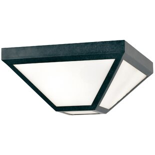 Best Hankerson 2-Light Outdoor Flush Mount By Brayden Studio