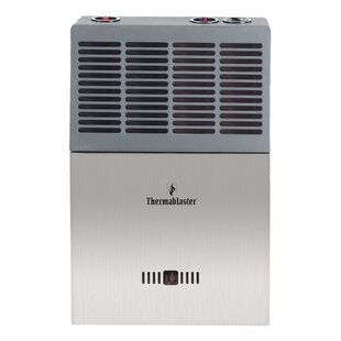 cabin water propane rheem choosing draft a hot vented cabins for heater house tiny