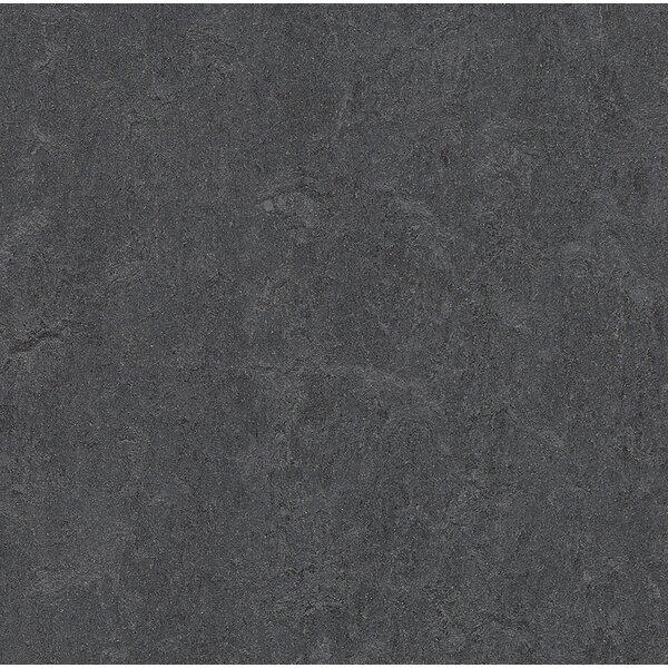 Marmoleum Click Cinch Loc 11.81 x 35.43 x 9.9mm Cork Laminate Flooring in Gray by Forbo