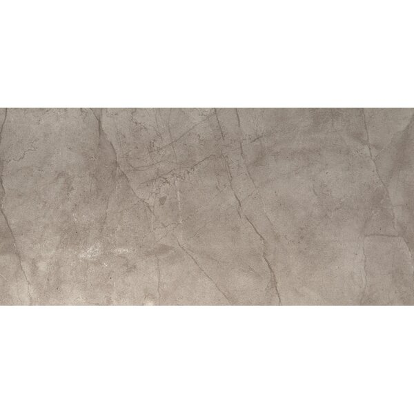 Citadel 24 x 35 Porcelain Field Tile in Gray by Emser Tile