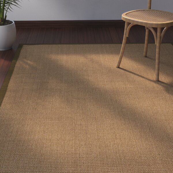 Jamesville Hand Woven Brown Area Rug by Bay Isle Home