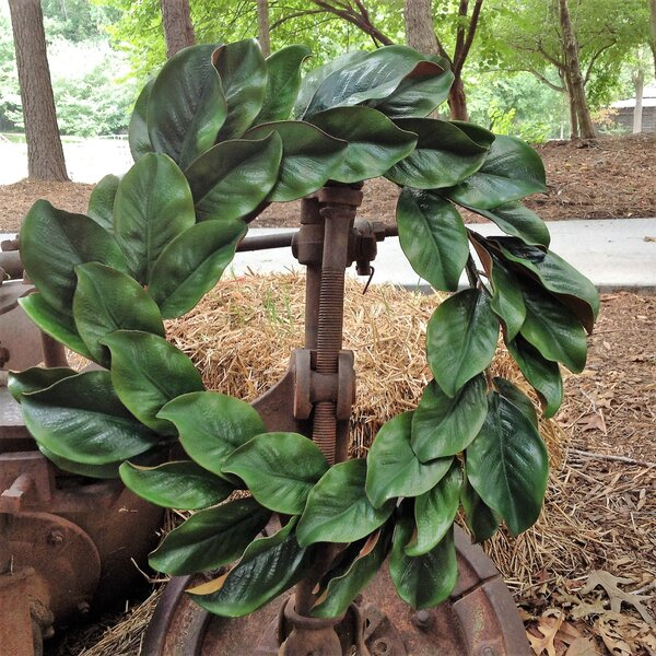 Faux 24 Magnolia Wreath by Gracie Oaks