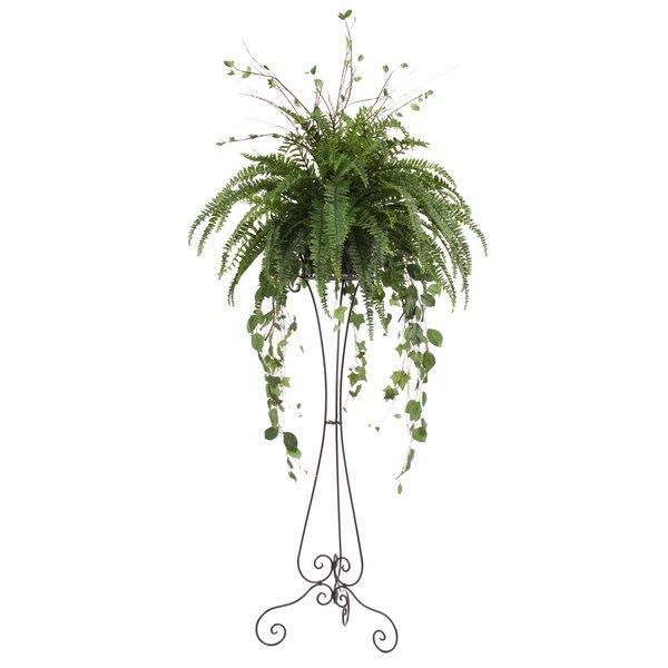 Silk Boston Fern Arrangement Floor Plant in Plant Stand by Distinctive Designs