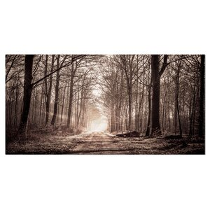 'Forest Trail in Sepia' Photographic Print on Wrapped Canvas by Design Art