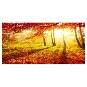 'Yellow Red Fall Trees and Leaves' Photographic Print on Wrapped Canvas by Design Art