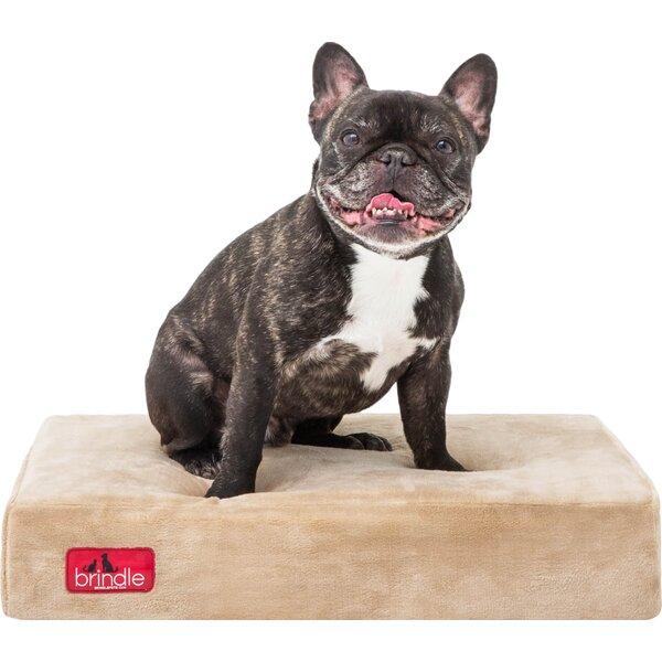 Orthopedic Memory Foam Dog Bed by Brindle