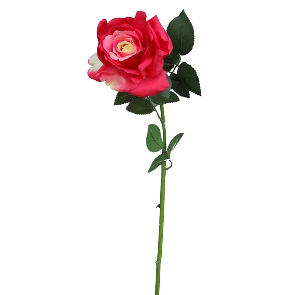 Rose Long Stem by House of Hampton