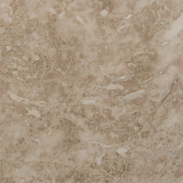 12'' x 12'' Marble Field Tile in Crema Cappuccino by MSI