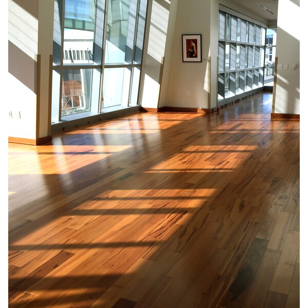 Imperial 4-3/4 Engineered Tigerwood Hardwood Flooring in American Hickory by Albero Valley