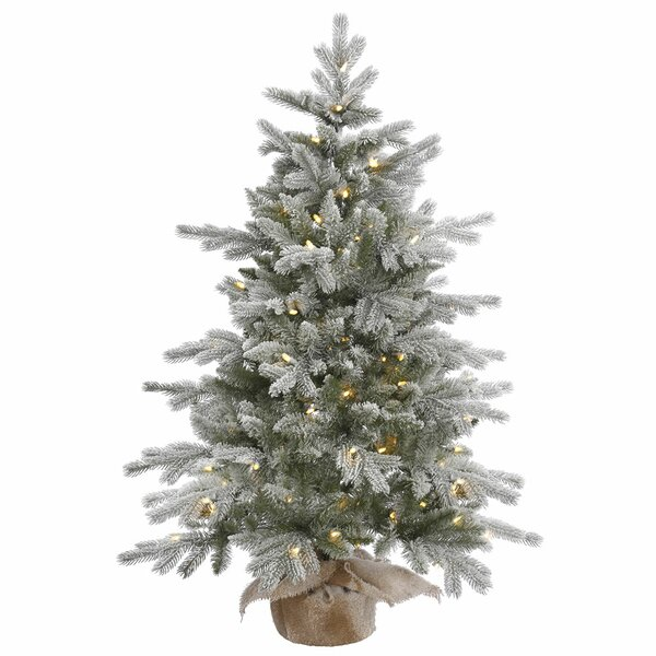 48 Frosted Pine Artificial Christmas Tree with 100 Clear/White Lights with Stand by The Holiday Aisle