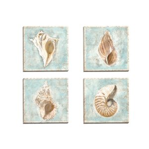 'Framed Shells I' 4 Piece Graphic Art on Wrapped Canvas Set by Beachcrest Home