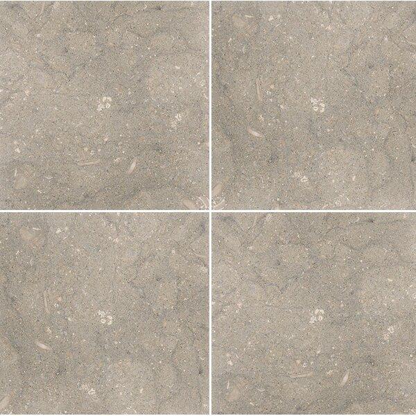 Sea Grass 12 x 12 Limestone Field Tile in Gray by Parvatile