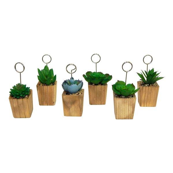 6 Piece Table Sign Succulent Desktop Plant in Pot Set by George Oliver