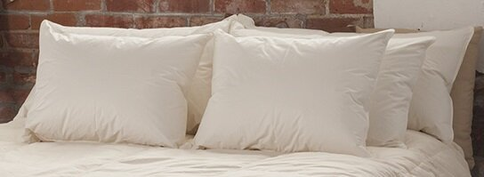 Firm Down Pillow by Alwyn Home