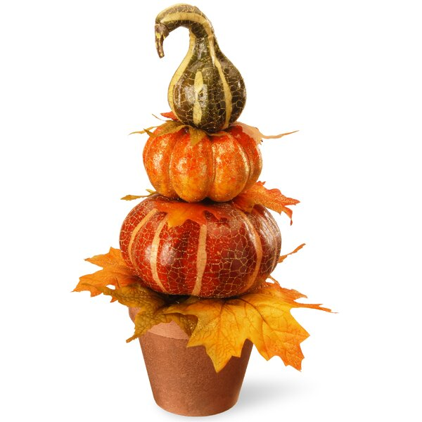 Harvest Potted Pumpkin Decor by National Tree Co.