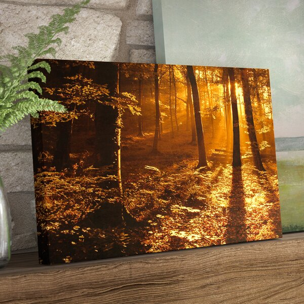 Morning Light Photographic Print on Canvas by Loon Peak