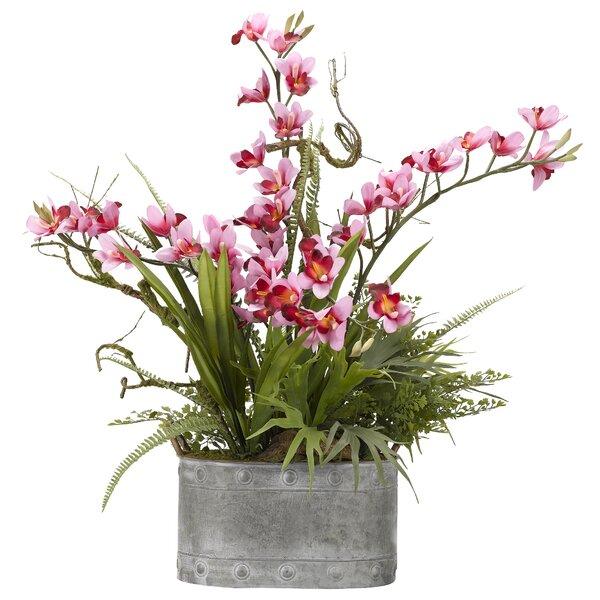 Orchids Floral Arrangement in Planter by Latitude Run