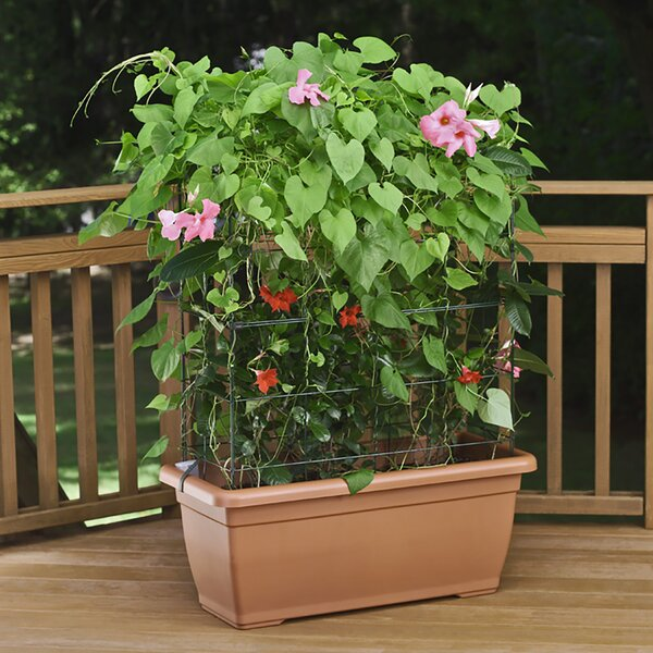 Self-Watering Planter Box with Trellis by Marchioro