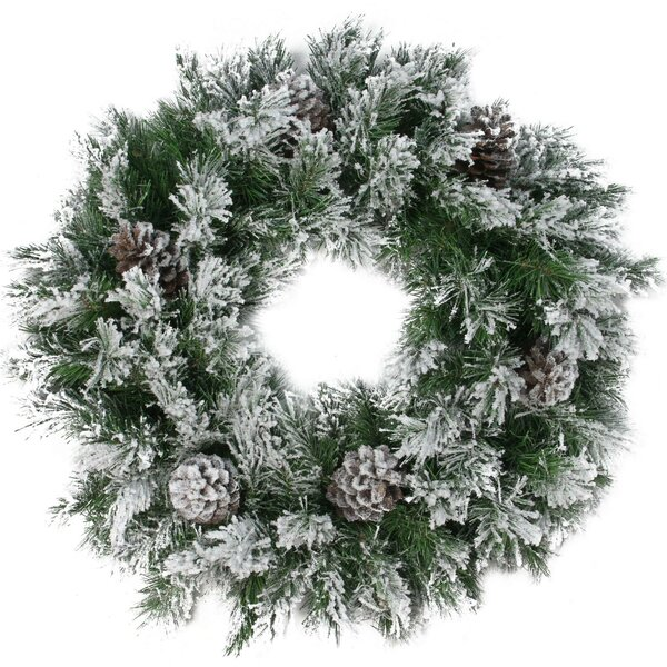 24 Flocked Angel Pine with Pine Cones Artificial Christmas Wreath with Unlit by The Holiday Aisle