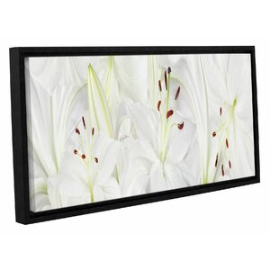 Lily Landscape Framed Photographic Print on Wrapped Canvas by Bay Isle Home