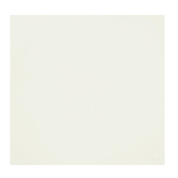 Bianco 24 x 24 Porcelain Field Tile in Bone White by Casa Classica