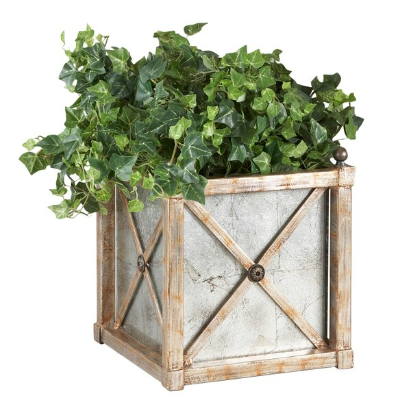 Mirror Planter Box by Chelsea House