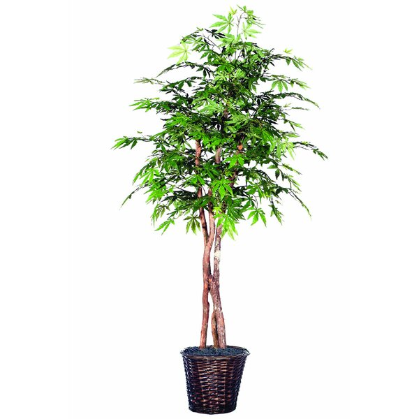 Artificial Foliage Japanese Maple Heartland Tree in Pot by Bloomsbury Market