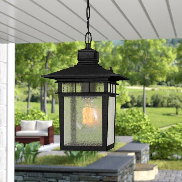Valeri 1-Light Outdoor Hanging Lantern by Beachcrest Home