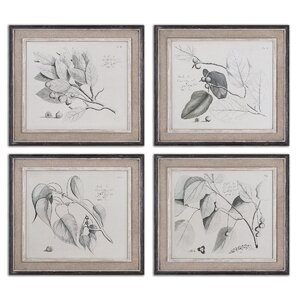Sepia Leaf Study by Grace Feyock 4 Piece Framed Painting Print Set by Uttermost