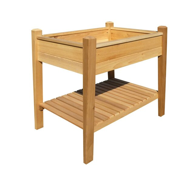 Phat Tommy 3.5 ft x 2 ft Cedar Raised Garden by Buyers Choice