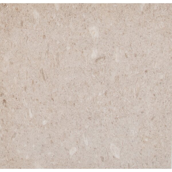 Coastal 18 x 18 Limestone Field Tile in Beige by MSI