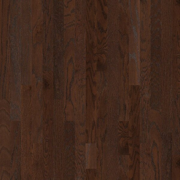 Lakeland 3-1/2 Engineered Red Oak Hardwood Flooring in Pooler by Shaw Floors