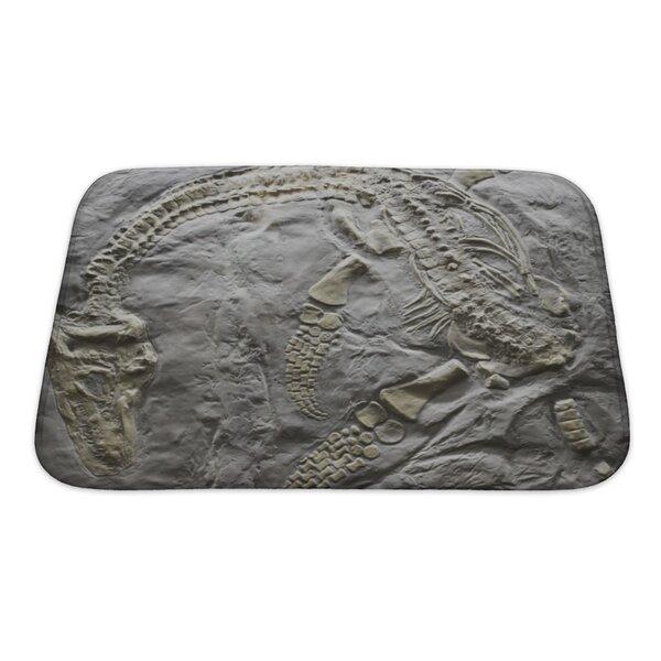 Dinosaurs Skeleton of Ancient Dinosaur Rock, Evolution Bath Rug by Gear New