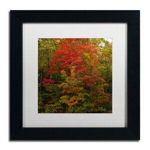 Why I Love Autumn 2 by Kurt Shaffer Framed Photographic Print by Trademark Fine Art