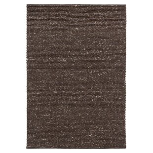 https://secure.img1-ag.wfcdn.com/im/62337999/resize-h310-w310%5Ecompr-r85/8112/8112561/northern-dark-brown-area-rug.jpg