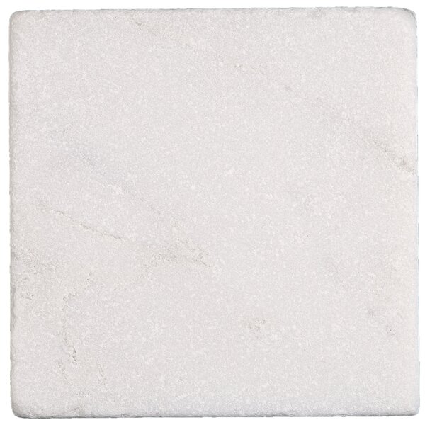 Harrison 4 x 4 Marble Field Tile in First Snow Elegance by Itona Tile