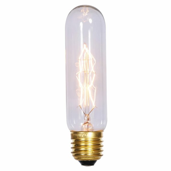 40W E26 LED Light Bulb by Vickerman