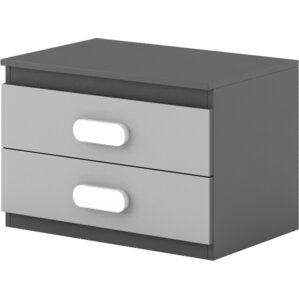 Cannella 2 Drawer Nightstand by Ivy Bronx