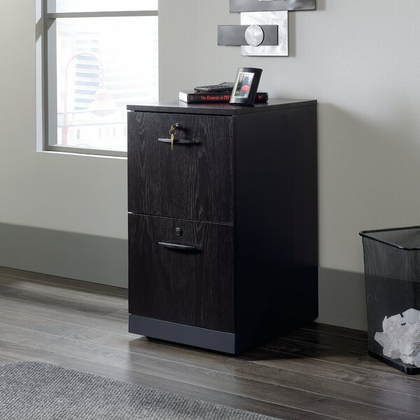 Castalia 2-Drawer Vertical Filing Cabinet by Red Barrel Studio