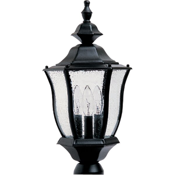 Forontenac Cast Outdoor 3-Light Lantern Head by Darby Home Co