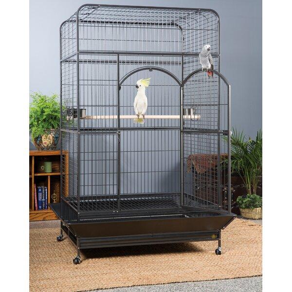 Ellwood Macaw Cage by Archie & Oscar