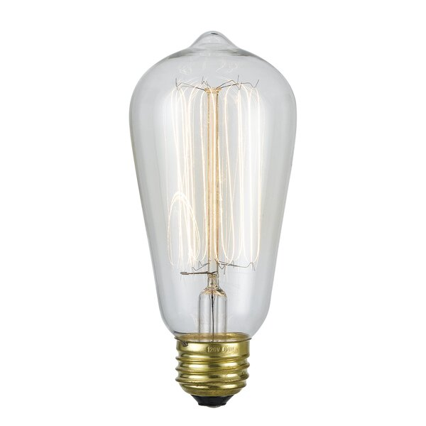 60W E26 Incandescent Edison Light Bulb by Cal Lighting