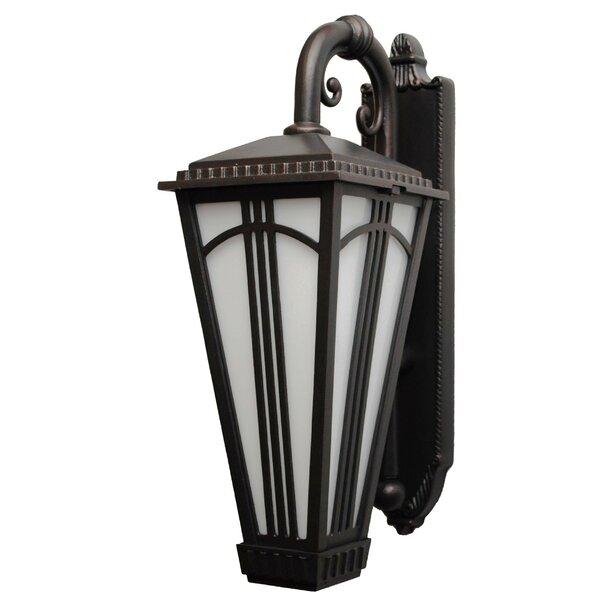 Petrey 1-Light Outdoor Wall Lantern by Alcott Hill