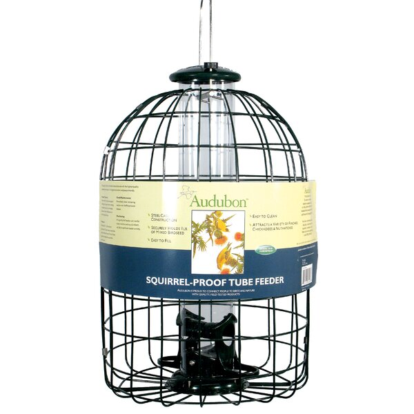 Squirrel Proof Caged Tube Bird Feeder by Audubon