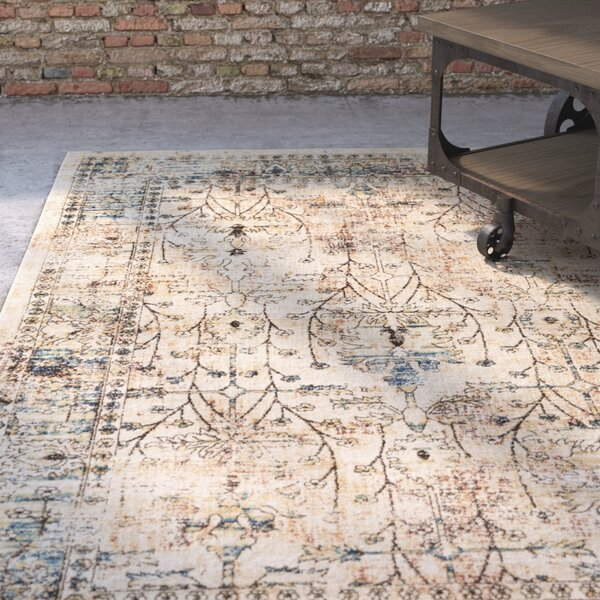 Ipasha Dark Brown/Navy Area Rug by Trent Austin Design