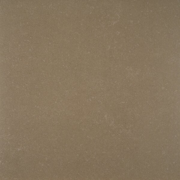 Dimensions 24 x 24 Porcelain Field Tile in Gray by MSI